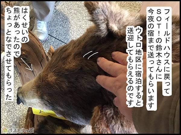 レクチャーハウスに戻ってSOT!の鈴木さんに今夜の宿まで送ってもらいます。ウトロ地区に宿泊すると送迎してもらえるのです。はくせいの熊があったのでちょっとなでさせてもらった。