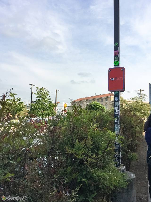 バス停の様子。道路沿いです