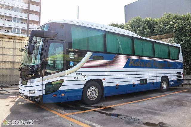 バスの外観は青と白が基調