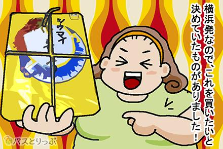 ドリームスリーパー(中国バス)で横浜から広島へ 2列シート豪華バスの旅(※現在は東京発着)