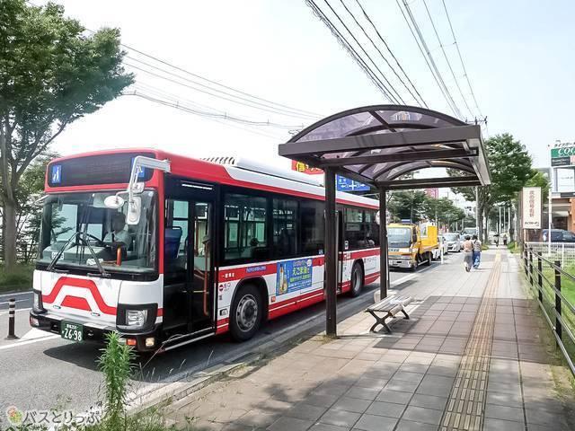 白いボディに赤いラインのミヤコーバス