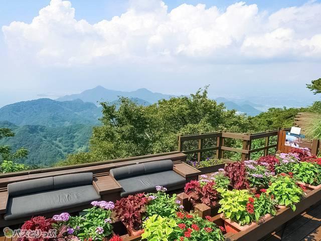 「伊豆の国パノラマパーク」の葛城山山頂からの絶景
