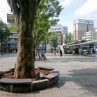 甲府駅周辺ベンチ