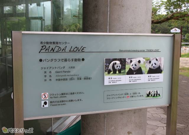 希少動物繁殖センター「PANDA LOVE(パンダラブ)」