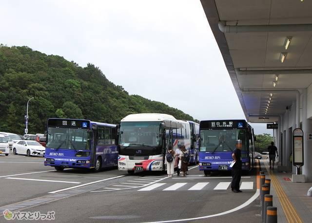アドベンチャーワールドで発車を待つ路線バスと高速バス