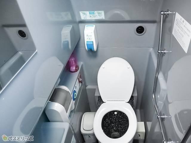 水洗式のトイレの壁には鏡もあります