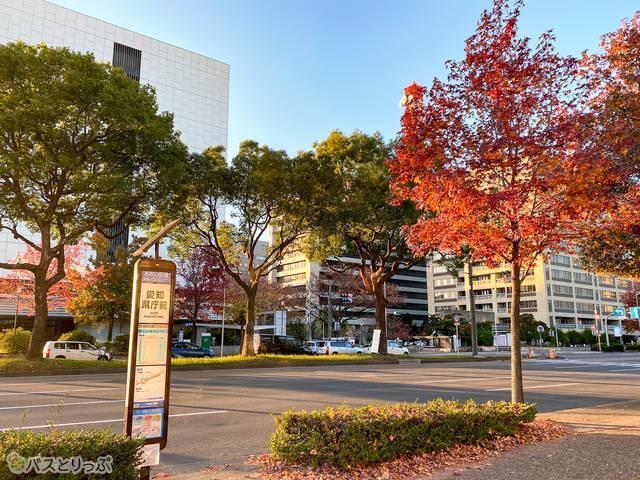 愛知県庁前バス停