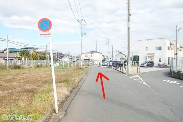 またY字路があります。今度は左の道へ進みます