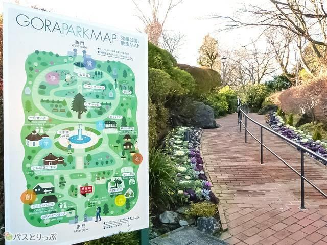自然豊かな箱根強羅公園。ペットと一緒に散歩する人も多いのどかなスポット