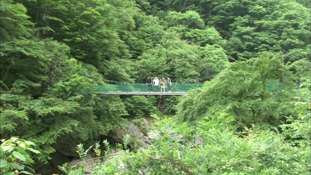 吊り橋2.png