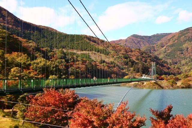 もみじ谷大吊橋 ※イメージ