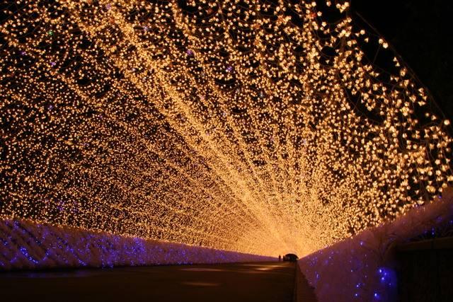 200mの光のトンネル.JPG