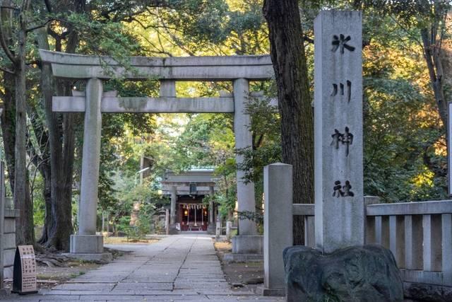 赤坂氷川神社.jpg