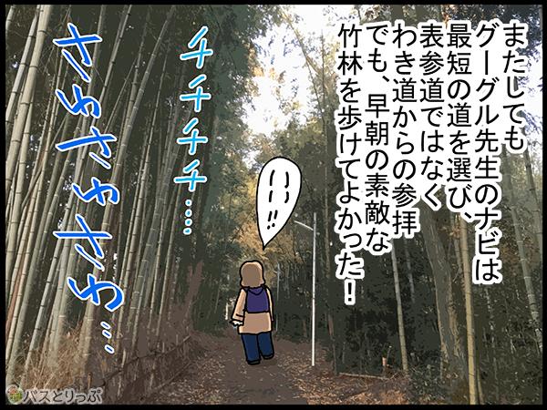 またしてもグーグル先生のナビは最短の道を選び、表参道ではなく、わき道からの参拝。でも早朝の素敵な竹林を歩けてよかった!