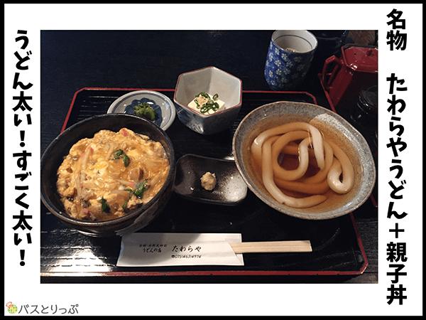 名物 たわらやうどん+親子丼。うどん太い!すごく太い!
